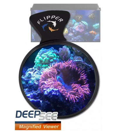 DeepSee Viewer FLIPPER - 4""