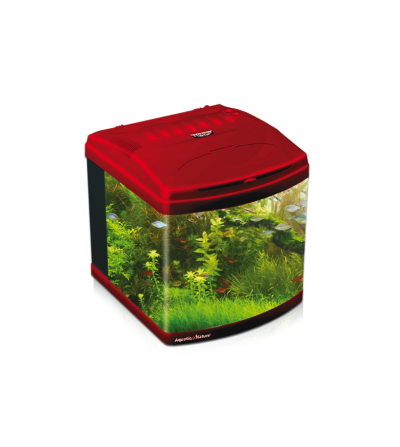Acuario Evolution Deep Red